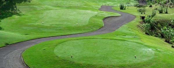 golf buggy paths