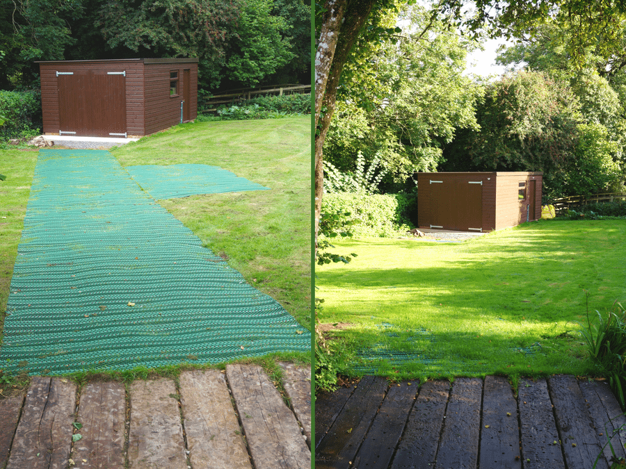 Grass Protection Mesh to Shed Featured Image