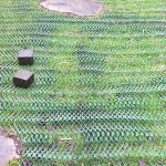 Grass Protection Mesh Featured Image