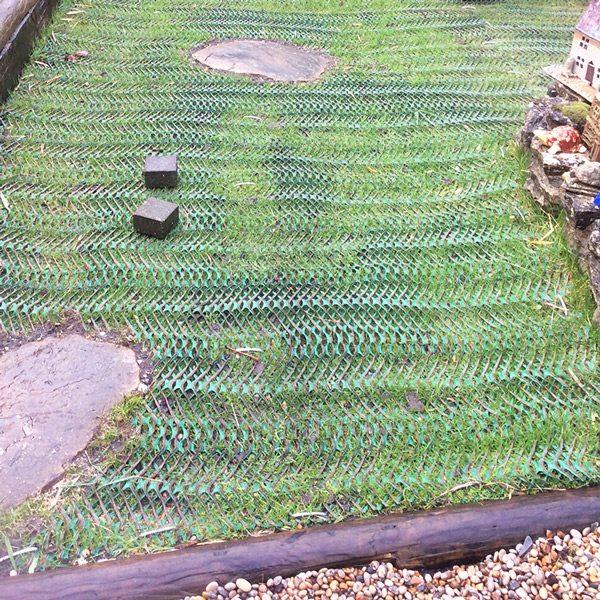 Grass Reinforcement Mesh Work