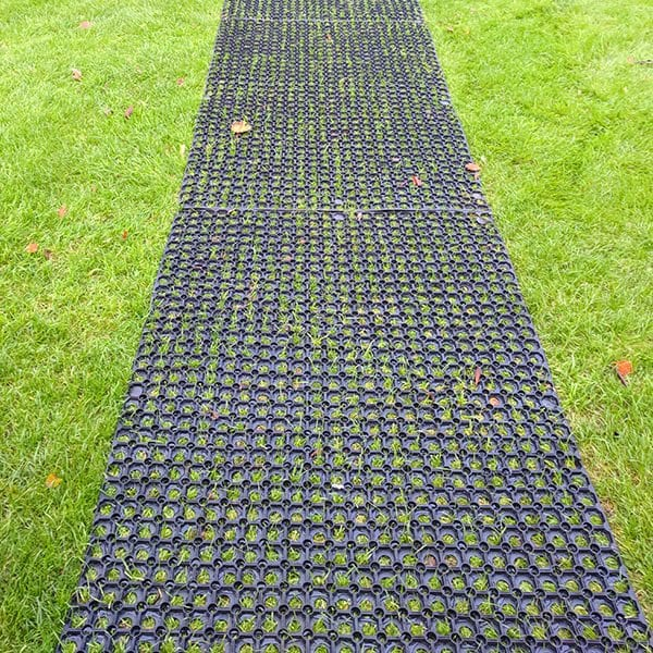 Grass Mats Two - Under Washing Line