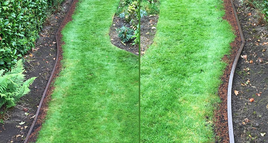 Lawn-Edging-Plank-Featured-Image
